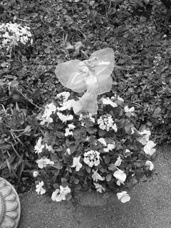 バラ園の中の妖精の写真・画像素材[2434660]