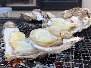 バーベキューで焼き牡蠣の写真・画像素材[2217019]