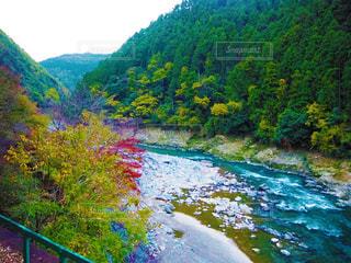 川の写真・画像素材[2243488]