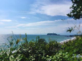 江ノ島の写真・画像素材[2513148]
