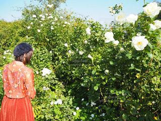 花の前に立つ人の写真・画像素材[2681116]