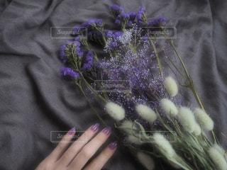 紫色の花を持つ人の写真・画像素材[2711176]