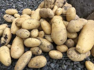 収穫したばかりのジャガイモの写真・画像素材[2218662]