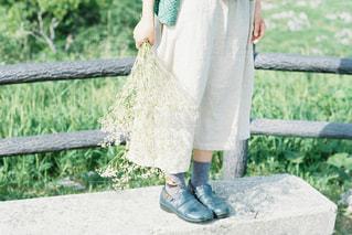 かすみ草を持って。の写真・画像素材[2218714]