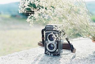 二眼レフ × かすみ草の写真・画像素材[2218716]