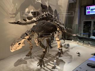 建物の前の恐竜の写真・画像素材[2218722]
