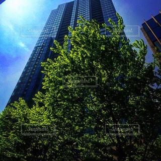都市の塔の写真・画像素材[2222552]