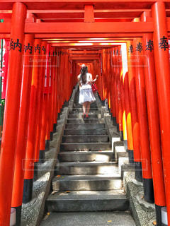 本殿へと。(日枝神社)の写真・画像素材[2250801]