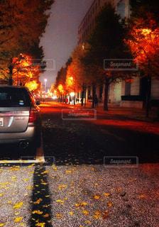 日比谷に広がる紅葉と落ち葉。の写真・画像素材[2336033]