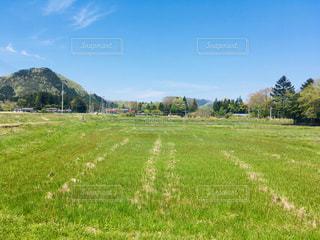 緑豊かな風景の写真・画像素材[2222442]