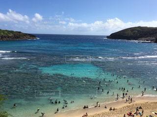 ハワイの海の写真・画像素材[2235169]