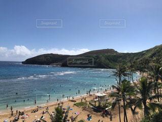 ハワイの海の写真・画像素材[2235171]