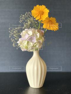 あじさいの花の写真・画像素材[2226624]
