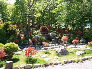 北海道小樽にある子育てスポット花園公園の池の様子の写真・画像素材[124357]