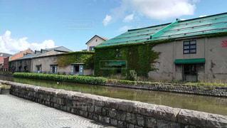 初夏の小樽運河と倉庫につたう緑の蔦の写真・画像素材[2443292]