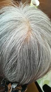 高齢女性の白髪頭。後頭部アップ。頭頂部。の写真・画像素材[2947433]