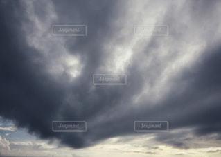 ブラックレインの写真・画像素材[2227771]