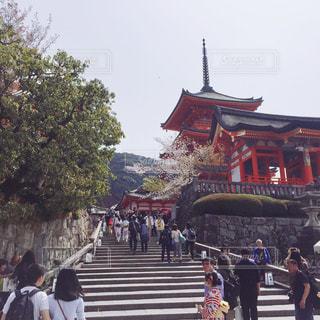 清水寺の風景の写真・画像素材[2228939]
