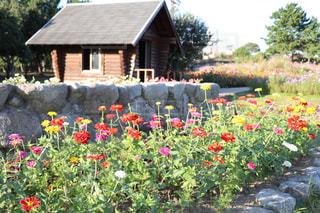 家の前の色とりどりの花園の写真・画像素材[2226162]