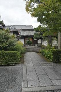 天龍寺入り口前門1の写真・画像素材[2466844]
