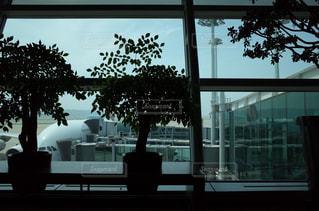 大きな窓の眺めの写真・画像素材[2228481]