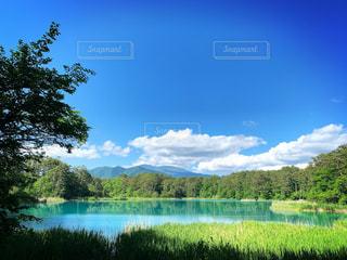 木々に囲まれた大きな水域の写真・画像素材[2228856]