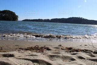 砂浜の上に座っている鳥の群れの写真・画像素材[2230717]