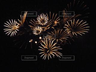 夜空の花火の写真・画像素材[2231543]