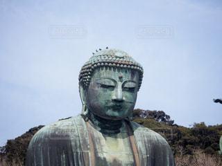 鎌倉大仏の写真・画像素材[2247976]