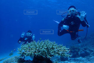 ダイビングの写真・画像素材[2237057]