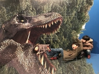 恐竜に乗る人の写真・画像素材[2264968]