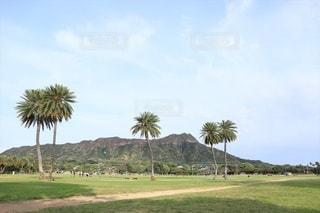 カピオラニ公園からダイヤモンドヘッドを望むの写真・画像素材[2237209]