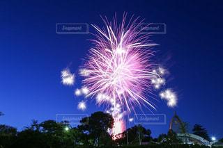 夜空に打ち上げられた花火の写真・画像素材[2280988]