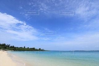 夏の海の写真・画像素材[2316778]