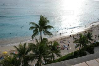 ワイキキビーチの写真・画像素材[2237320]