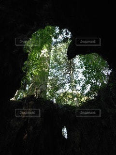 自然の写真・画像素材[88564]