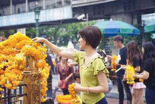 バンコクの寺で参拝する女性の写真・画像素材[2264105]