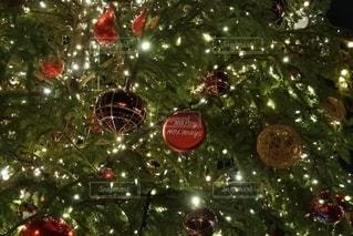 クリスマスツリーの写真・画像素材[2497427]