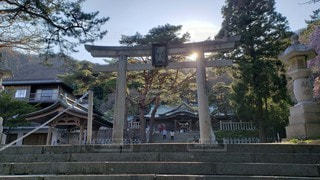 函館八幡宮 鳥居越しに望む社殿の写真・画像素材[2290368]