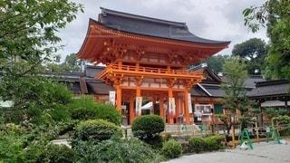 山城国一之宮 賀茂別雷神社 楼門の写真・画像素材[2506447]