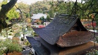 岐阜 虎渓山永保寺 高台から見た観音堂の写真・画像素材[2687888]