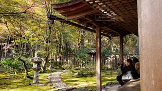 京都 高山寺石水院 庭園の写真・画像素材[2758053]