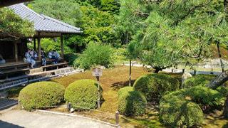 京都 青蓮院門跡 華頂殿と相阿弥の庭の写真・画像素材[2905130]