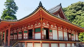 大阪 観心寺 金堂の写真・画像素材[2909424]