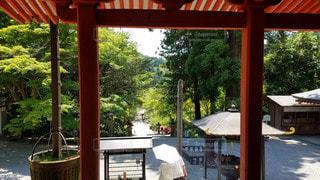 大阪 観心寺 金堂からの眺めの写真・画像素材[2909431]