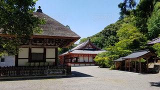 大阪 観心寺 境内の写真・画像素材[2910562]