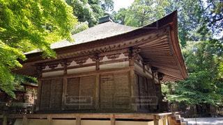 大阪 観心寺 開山堂の写真・画像素材[2910564]