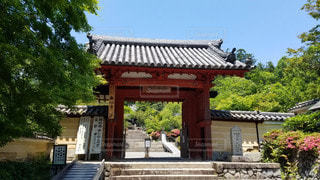 大阪 観心寺 山門の写真・画像素材[2910568]