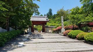 大阪 観心寺 参道口の写真・画像素材[2910567]