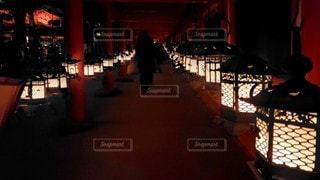奈良 春日大社 吊り灯籠の灯りの写真・画像素材[2942146]